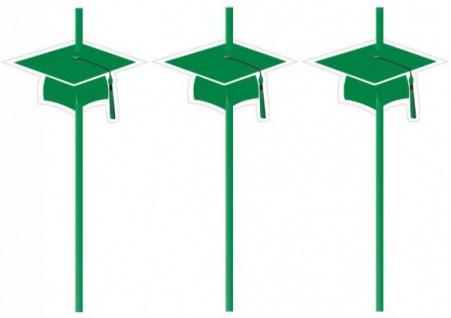 6 Trinkhalme Abi Examen Party Grün