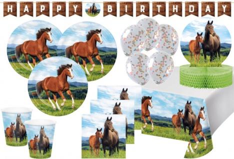 XL 40 Teile Wilde Pferde Party Deko Set für 8 Personen