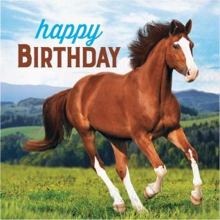 16 Geburtstags Servietten Wilde Pferde