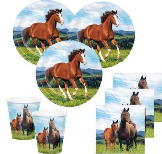 32 Teile Wilde Pferde Party Deko Set für 8 Personen