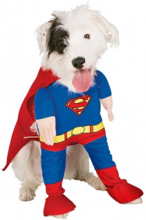 Hunde oder Katzen Kostüm Superman