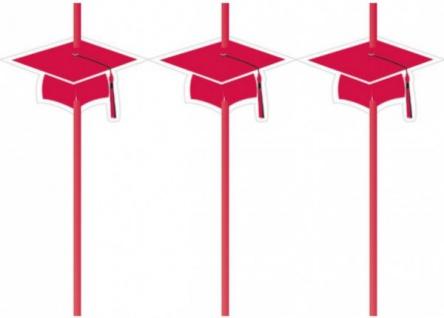 6 Trinkhalme Abi Examen Party Rot