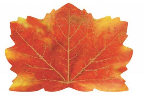 25 Deko Tischset Ahornblätter Herbstlaub