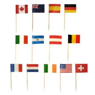 500 Party Picks Länder Fähnchen