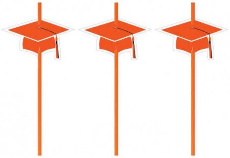 6 Trinkhalme Abi Examen Party Orange