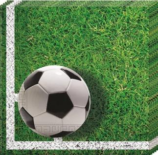 20 Servietten Fußball Stadionrasen