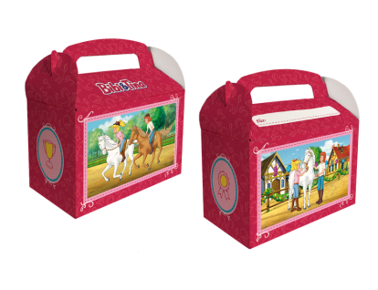 6 Bibi und Tina Geschenk Boxen