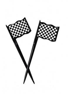 12 Plastik Picks Schwarz Weiß Formel 1