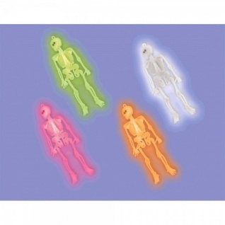 12 Neon Plastik Skelette