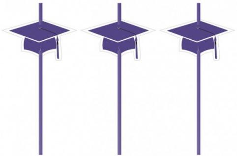 6 Trinkhalme Abi Examen Party Violett