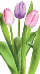 10 Taschentücher Frühlings Tulpen