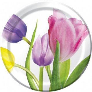 8 kleine Teller Frühlings Tulpen