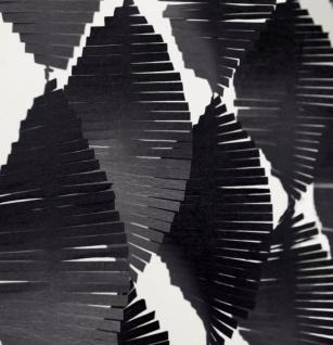 Fransen Girlande aus Seidenpapier in Schwarz 2, 74 Meter