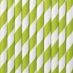 10 Papier Trinkhalme apfel grün weiß gestreift