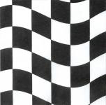 18 kleine Cocktail Servietten Schwarz Weiß Formel 1