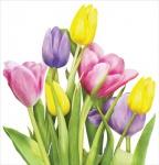 Frühlings Tulpen Tischdecke