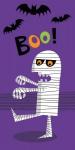 10 Taschentücher Mumie