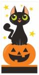10 Taschentücher schwarze Katze