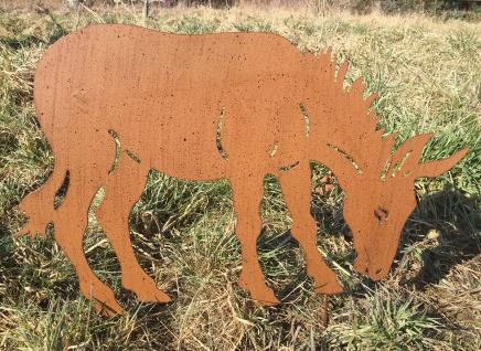 ESEL grasend 60x40cm Beetstecker Rostoptik Edelrost Metall Gartenstecker Pferd