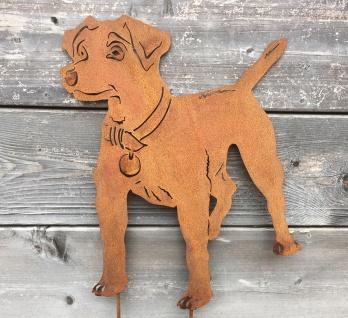 Hund Jack Russell Terrier 50x38cm Beetstecker Gartenstecker Edelrost Metall