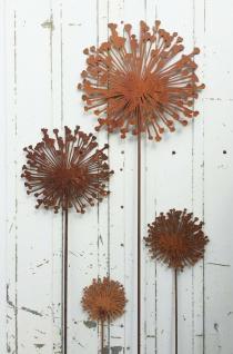 ALLIUM 15cm bis 40cm Pusteblume flach Edelrost Rost GARTENSTECKER Blume