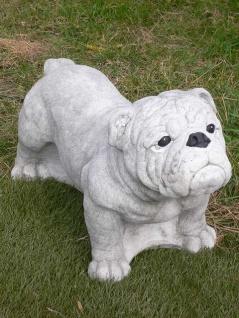 Steinfigur ENGLISCHE BULLDOGGE lebensgroß L70cm Hund Hunde Figur Steinguss