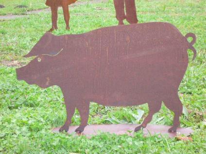 SCHWEIN Hausschwein 80x50cm Rost Edelrost Metall Bauerhof Wildschwein Garten - Vorschau 2