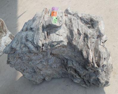 OZEANFINDLING Findling 45x76x52cm 219kg Naturstein Meeresgestein Dekostein Stein