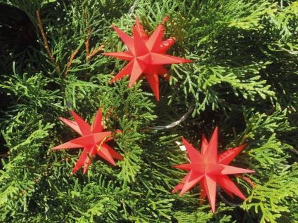 3er LED Mini Stern Sternenkette 8cm rot Batterie Innen Lichterkette Weihnachten