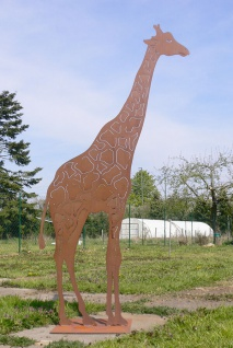 Giraffe Afrika 200cm Edelrost Rost Metall Figur Rostfiguren Rostfigur Tier