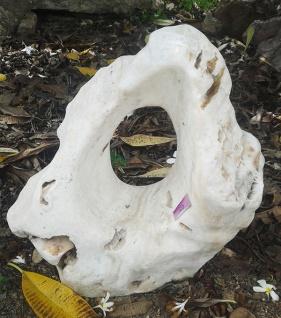 OZEANFINDLING Findling 59x62x32cm 96kg Naturstein Meeresgestein Skulptur Stein