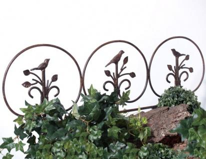 BEETABGRENZUNG AVIS 38x67cm RANKHILFE Metall Garten Zaun Beeteinfassung Vögel