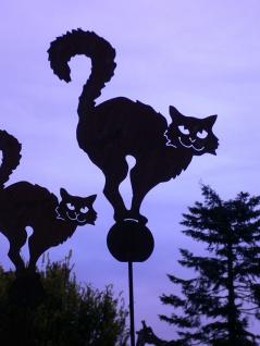 CRAZY CAT 42x50cm + Stab Katze Buckel Rost Edelrost Gartenstecker Gartendeko