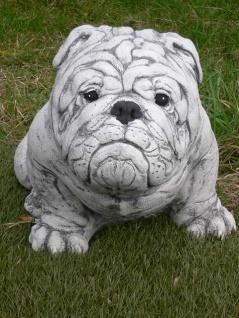 Steinfigur ENGLISCHE BULLDOGGE sitzt lebensgroß L60cm Hund Hunde Figur Steinguss