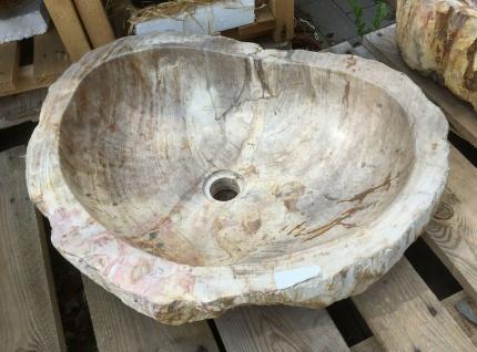 Waschbecken 58x46cm oval Stein versteinertes Holz Fossil Waschschale