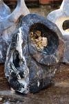 OZEANFINDLING Findling 112x98cm 638kg Naturstein Asia Show Stone Dekostein Stein