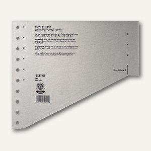 LEITZ Staffel-Trennblätter für DIN A4, grau, 100 Blatt, 16510085