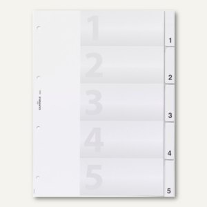 Kunststoff-Register DIN A4, blanko, Schilder bedruckbar, 5-tlg., 10 Sätze