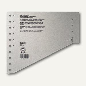 LEITZ Staffel-Trennblätter für DIN A4, grau, 100 Blatt, 16510085 - Vorschau