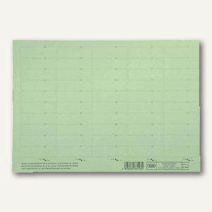 Beschriftungsschilder für Sichtreiter, 58 x 18 mm, grün, 500 Stück, 100420976
