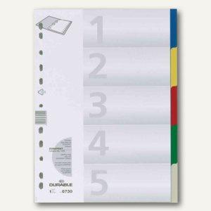 Register Kunststoff, blanko, DIN A4, 5-tlg., farbige Taben, 25 Stück, 6730-27