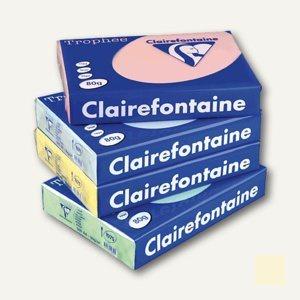 "Clairefontaine Papier "" Trophee"", DIN A3, 80g/m², pastell-sand, 500 Blatt, 1252C"