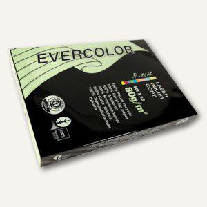 Papier EVERCOLOR PASTELL, DIN A3, 80g/m², hellgrün, 500 Blatt, 30004C