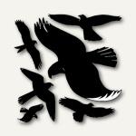 Avery Zweckform Fensterwarnvögel, wetterfest, schwarz,, 4485