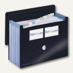 """FolderSys Fächermappe """" Akkordeon"""", 12 Taschen, schwarz, 10 Stück, 70006-30"""