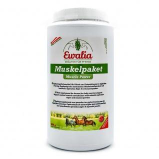 Ewalia Muskelpaket für Pferde