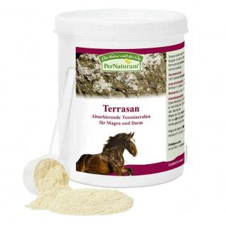 PerNaturam Terrasan Horse