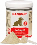 Canipur calcigel