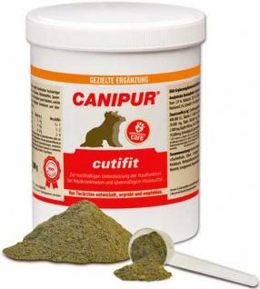 Canipur cutifit