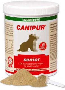 Canipur senior - Vorschau